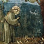 Becoming Franciscan
